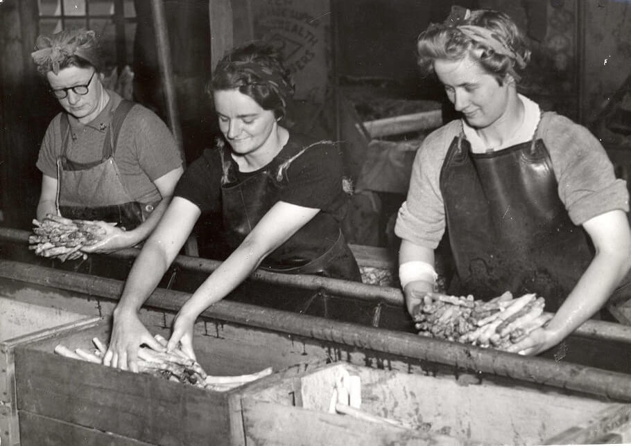 Shows Mrs. M. Wilson, Mrs. R. Doherty and Miss Laurie Fielder washing asparagus