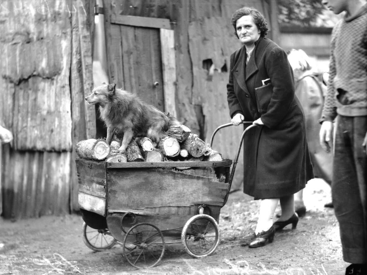 woman with firewood